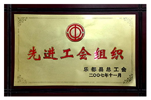 2007年11月先进工会组织.jpg